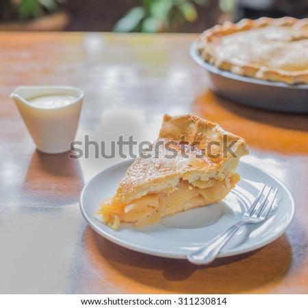 Piece of apple pie - stock photo