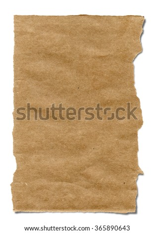 Piece of corrugated cardboard with torn edge. Isolated on white.