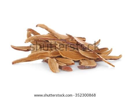 Piece of dry Ling Zhi Mushroom on white background. - stock photo