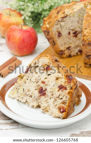 piece of homemade apple cake with cinnamon and dried cranberries on a plate