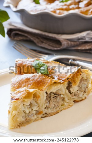 Piece of Meat Vertuta, strudel. Traditional Moldavian and Romanian snail-shaped pie. - stock photo