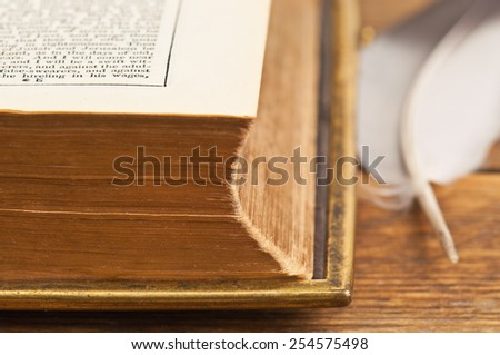 piece of old book (Bible) and feather - stock photo
