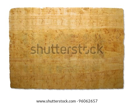 Piece of papyrus texture - stock photo