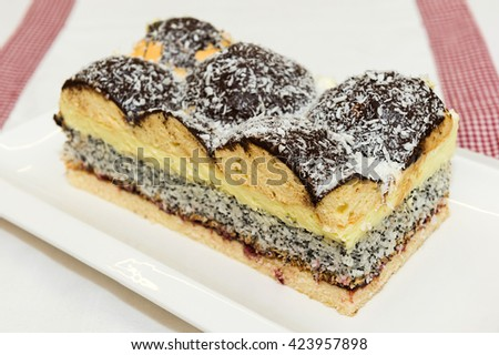 Piece of poppy seed sponge cake with chocolate topping. - stock photo