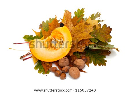 piece of pumpkin and nuts on autumn leafs isolated over white