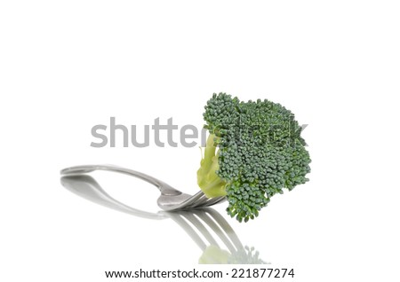 piece of raw broccoli on end of fork isolated white background - stock photo