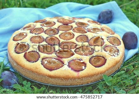 Piece of summer cake with plums on blue cloth on grass, front horizontal view