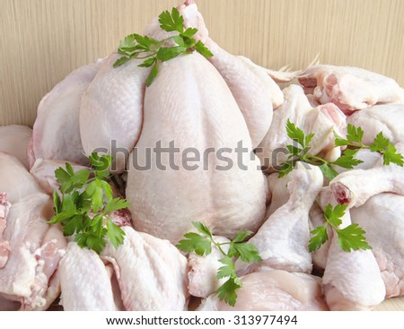 Pieces of raw chicken meat - stock photo