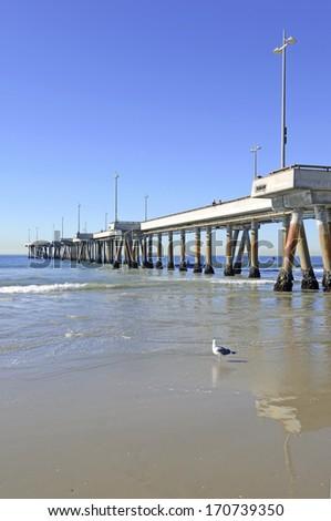 Pier at Venice Beach, California - stock photo