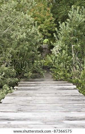 pier leading ashore through some hedges