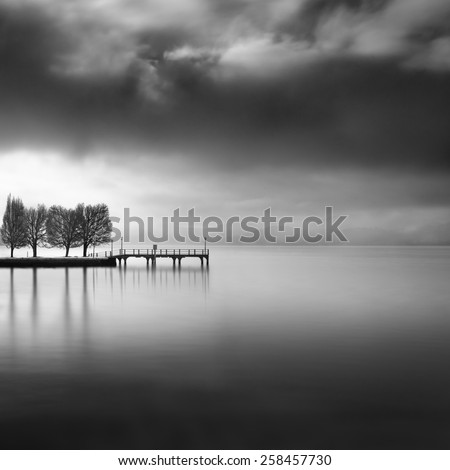 Pier with trees in the lake - stock photo
