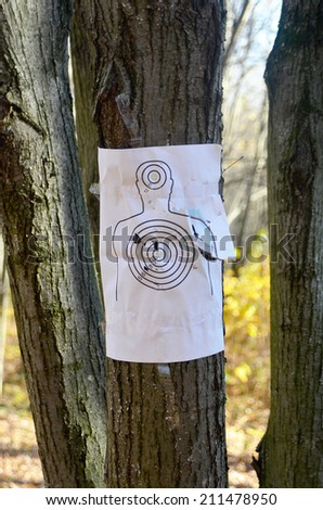 pierced target - stock photo
