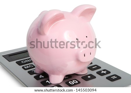 Pig and calculator on a white background
