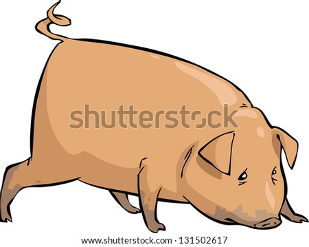 Pig on a white background raster version