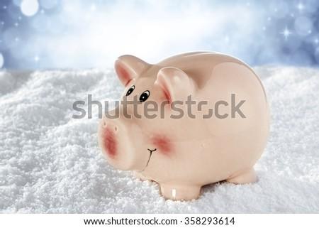 pig on snow  - stock photo