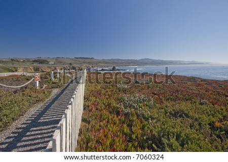 Pigeon Point California - stock photo