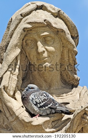 pigeon resting in a secluded place in the folds of clothing sculpture. Prague, Charles Bridge