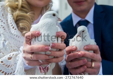 pigeons in the hands of the newlyweds - stock photo