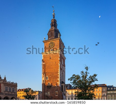 Pigeons in the morning Krakow main market square. Poland, Europe - stock photo