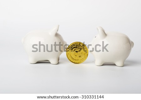 Piggy and Coins