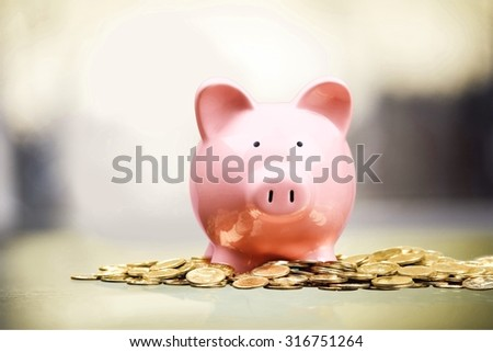 Piggy Bank. - stock photo