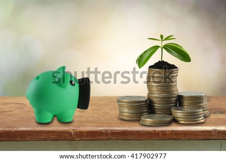 piggy bank and coins with small plant growing out of it - Investment And Interest Concept