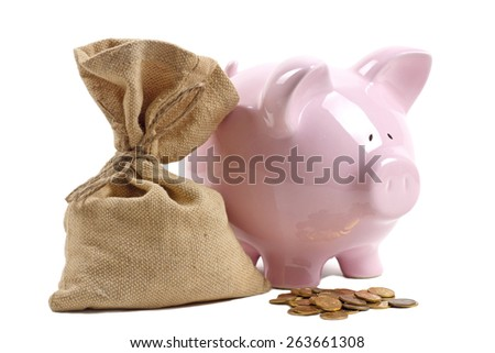 Piggy Bank and money bag with coins on white background - stock photo
