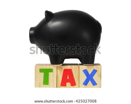 Piggy bank and wooden blocks with TAX word - stock photo
