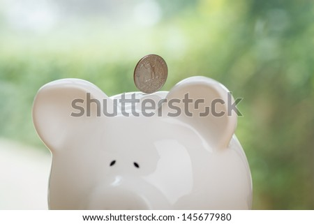 Piggy bank being loaded. Piggy Bank, and Coin. - stock photo