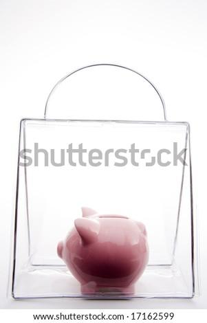 Piggy Bank In A Bag - stock photo