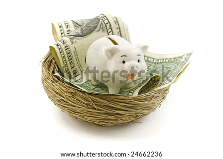 Piggy bank in the nest. Financial concept. White background