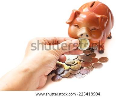 Piggy bank isolated on white background. - stock photo