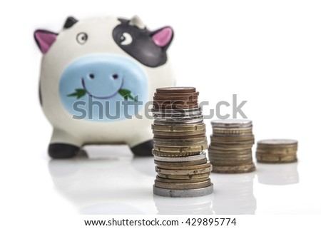 Piggy bank isolated on white background with reflection