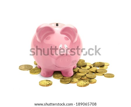 Piggy Bank Looking at Coins - stock photo