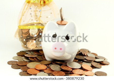 Piggy bank on a coins with money bag