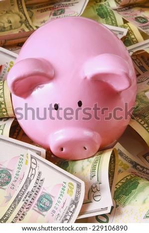 piggy bank on dollars - stock photo