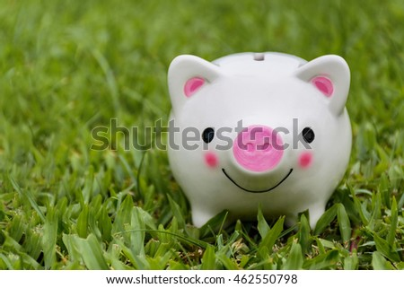 Piggy Bank on grass in nature .