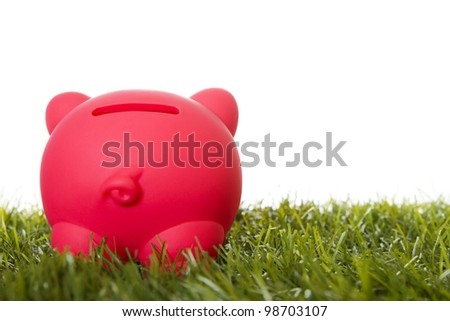 Piggy bank on grass, rear view.