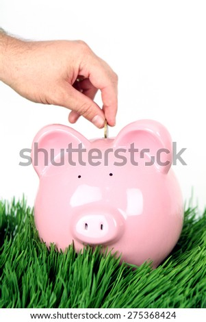 Piggy Bank on White Background with hand putting in coin