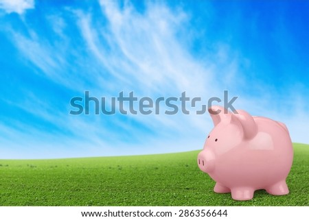 Piggy Bank, Pig, Savings. - stock photo
