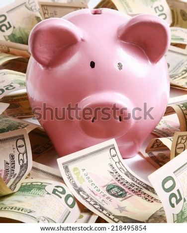piggy bank standing on dollars - stock photo