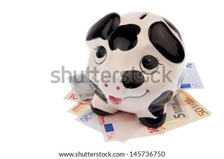 Piggy bank with black and white cow spots, looking upwards and standing on a bed of Euro banknotes, isolated in white background - stock photo