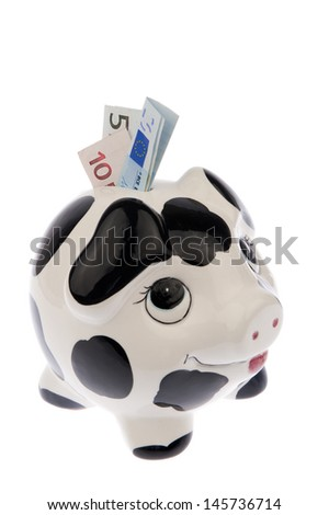 Piggy bank with black and white cow spots, looking upwards with a variety of Euro banknotes in its slot, isolated in white background and viewed from the right side - stock photo