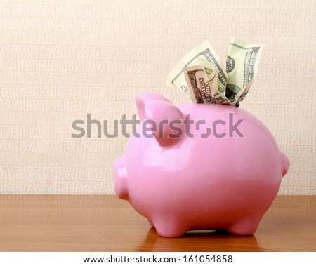 piggy bank with dollars - stock photo