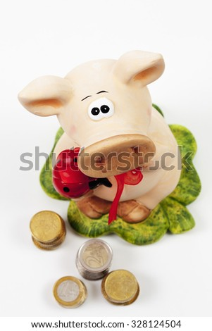 Piggy bank with Euro on white background - stock photo