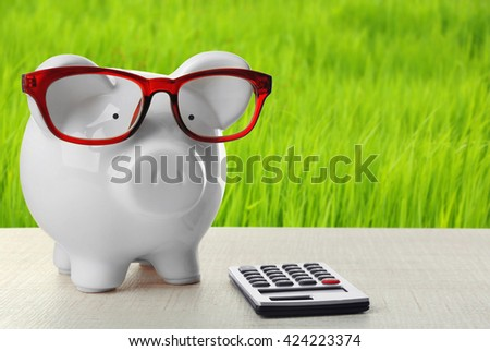 Piggy bank with glasses and calculator on green grass background - stock photo