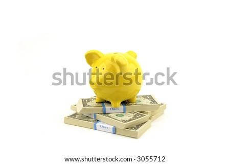 Piggy Bank with Stack of money - stock photo