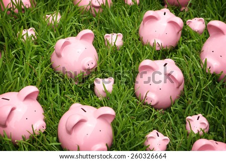 Piggy banks on grass - stock photo