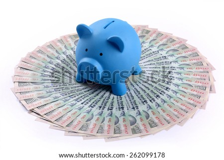 Piggy standing on the heap of indian paper currency - stock photo