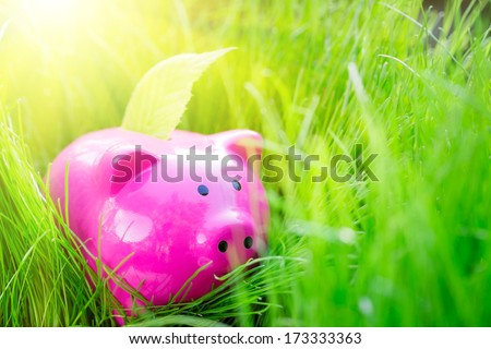 Piggybank and leaf on green spring grass. Shallow depth of field